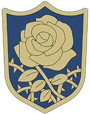 Insigne Rose Bleue