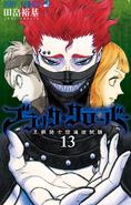 Volume 13