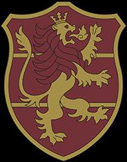Insigne Lion Flamboyant