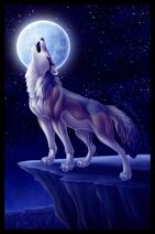 Bandit's Moon Magic