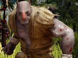 Altar Imp Fighter