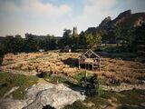 Lynch Farm Ruins
