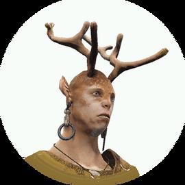 Ernill icon