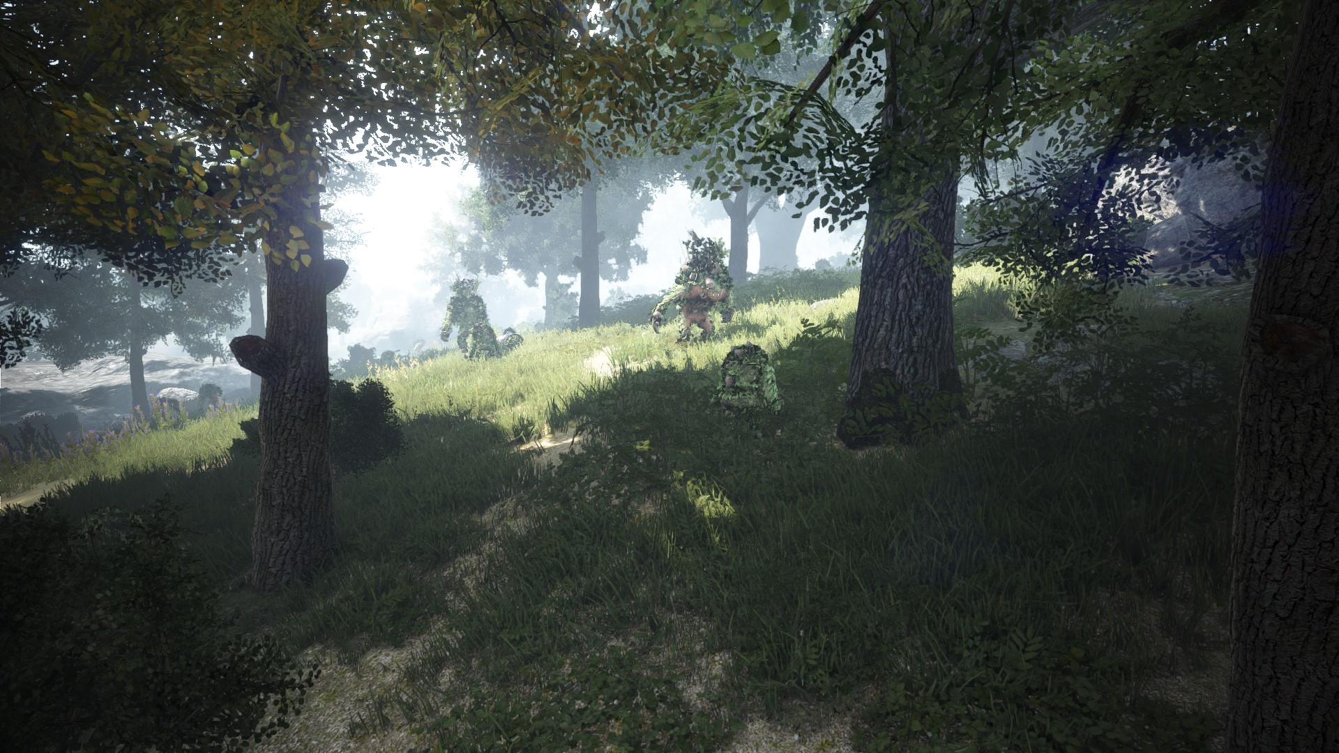 Forest of Seclusion | Black Desert Wiki | FANDOM powered by Wikia