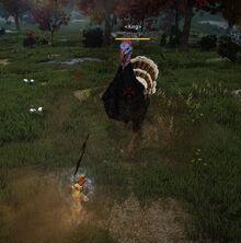 Event harvest turkey