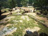 DelLucci Farm