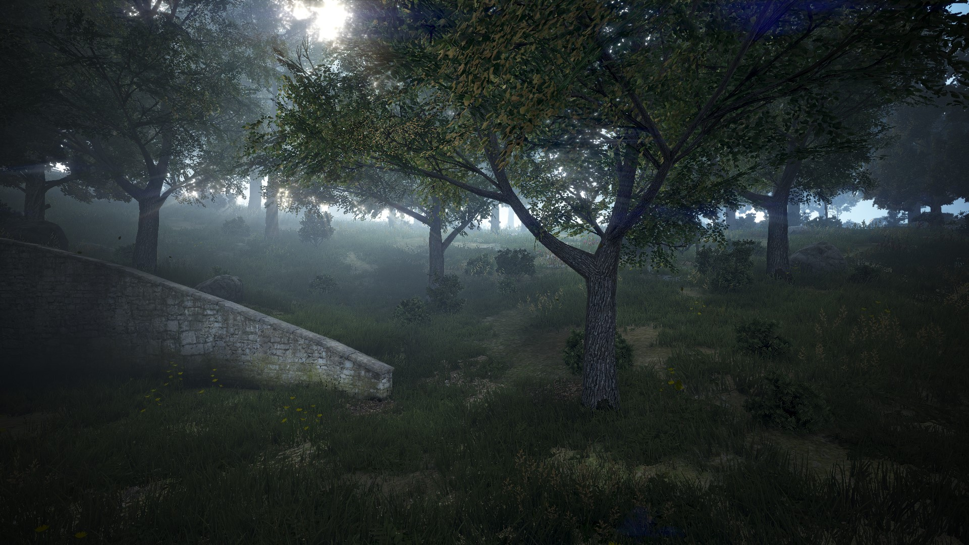 King's Forest | Black Desert Wiki | FANDOM powered by Wikia