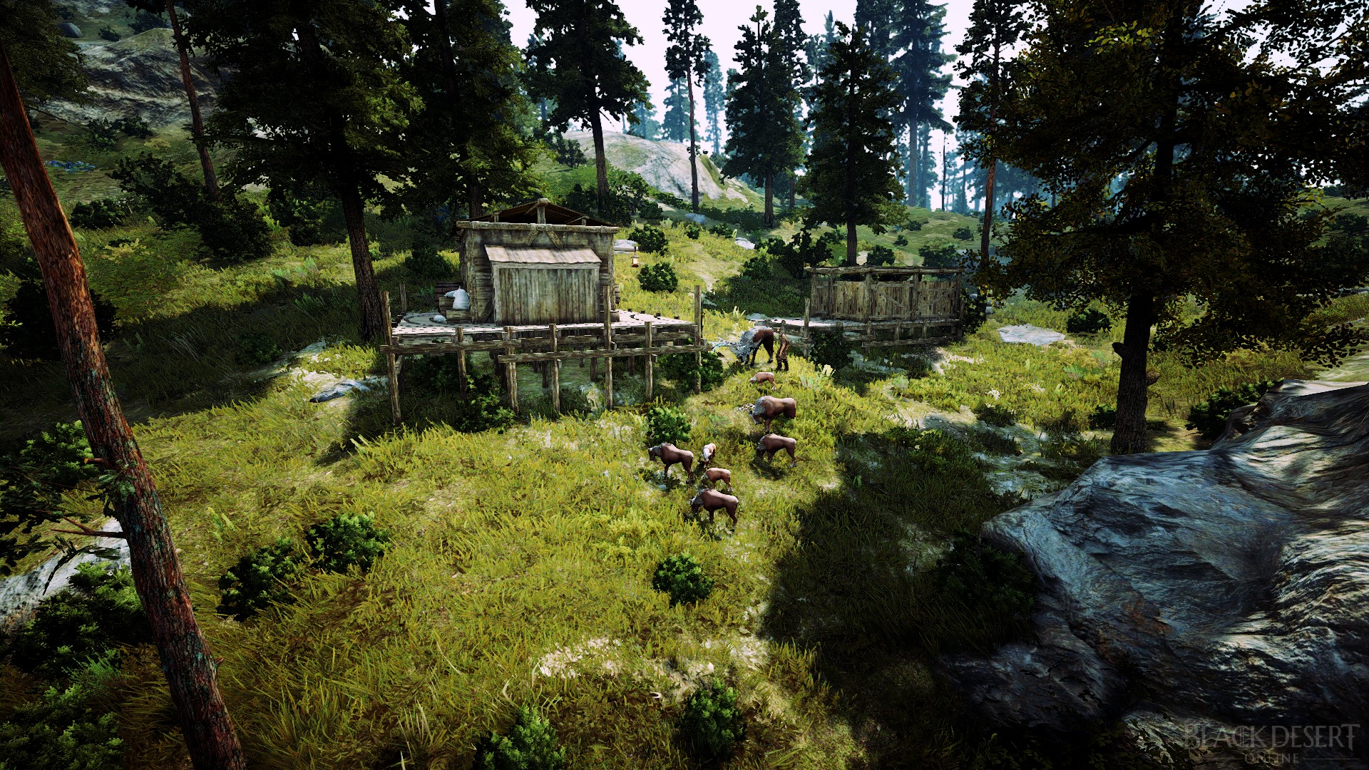 Phoniel's Cabin | Black Desert Wiki | FANDOM powered by Wikia