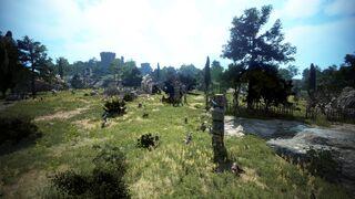 Ehwaz Hill