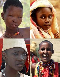 Afro diversity