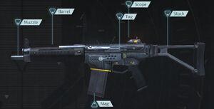 Blacklight Retribution Assault Rifle