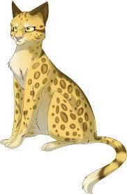 Leopardeye