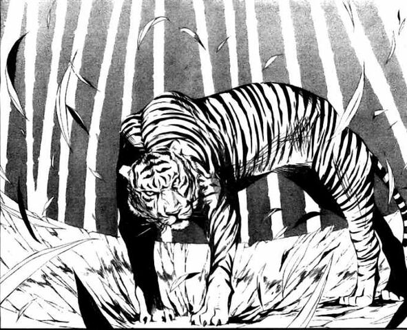 Datei:Innocentsoul tiger.jpg