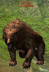Storyquest pondskip grin n bear it pic01
