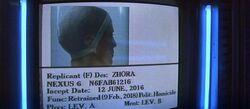 Zhora Info