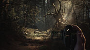 Blair Witch (Game) 5