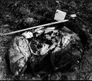 Buried Bag