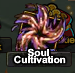 SoulCultivationIcon