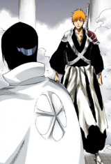 659Ichigo and Uryu meet
