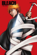 Bleach Vol. 6 Cover