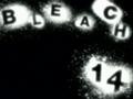 120px-Bleach 14