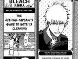 El capitán oficial del Gotei 13 de limpieza
