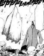 326Ikkaku is defeated