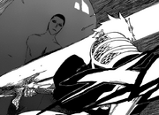 Ichigo menebas Raja Roh