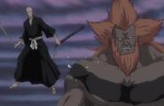254Ikkaku and Hozukimaru discuss