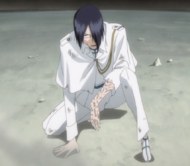 271Uryu is wounded