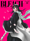 Bleach Vol. 47 Cover