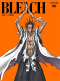 Bleach Vol. 49 Cover