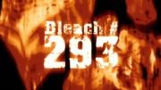 180px-Bleach 293
