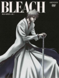 Bleach Vol. 34 Cover