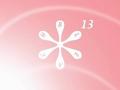 120px-Bleach 13