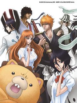 Bleach Anime 5th Anniversary Box Set Cover
