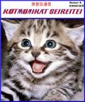 Okladka4