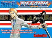 Bleach Capítulo 01