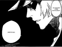 Urahara le dice a Isshin que Ichigo de todas formas se enteraría de la verdad