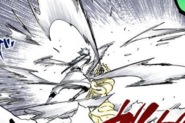 593Hitsugaya attacks