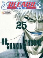 Bleach cover 25