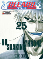 Bleach cover 25
