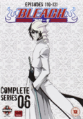 Bleach Complete Series 6