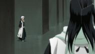 Reigai-Hitsugaya approaches Byakuya