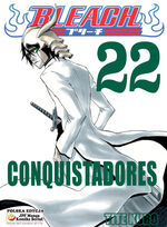 Bleach cover 22