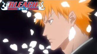 Bleach - Ending 10 Sakura Biyori