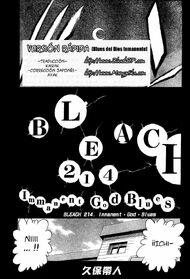 Bleach 214