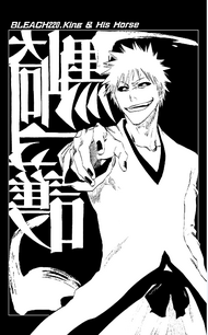 C220 cover page Hollow Ichigo