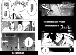 Bleach 598