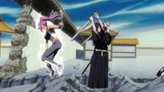 Yoruichi Defeats The Hinamoris